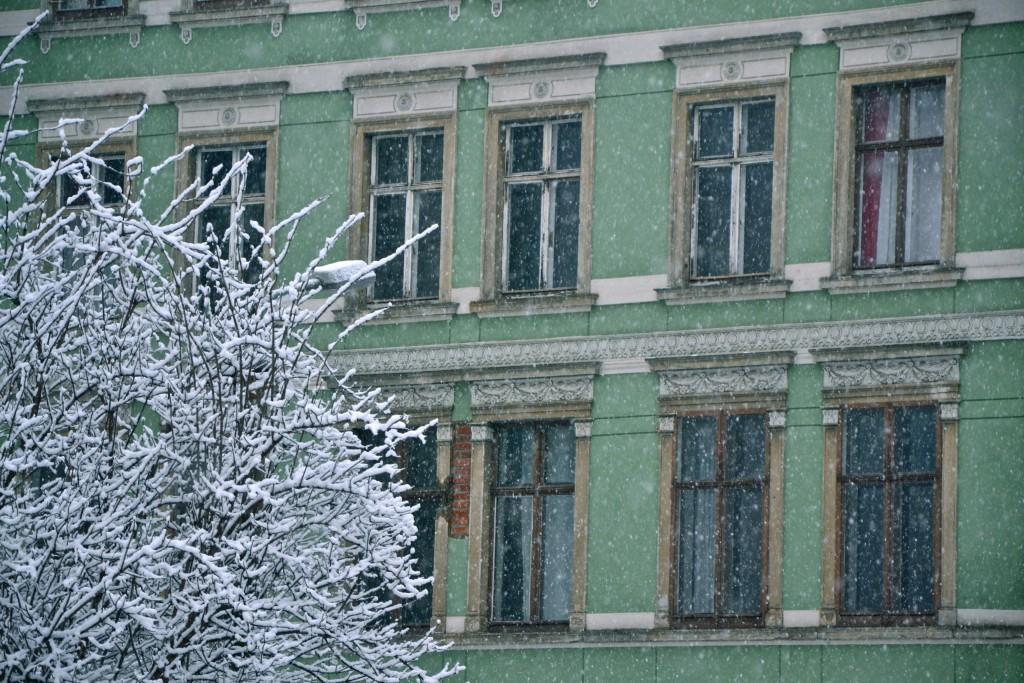 Grünes Haus Leipzig